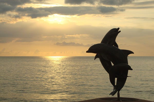 La Danza de los Delfines Sculpture ● Photo by Harvest Estudio 2013